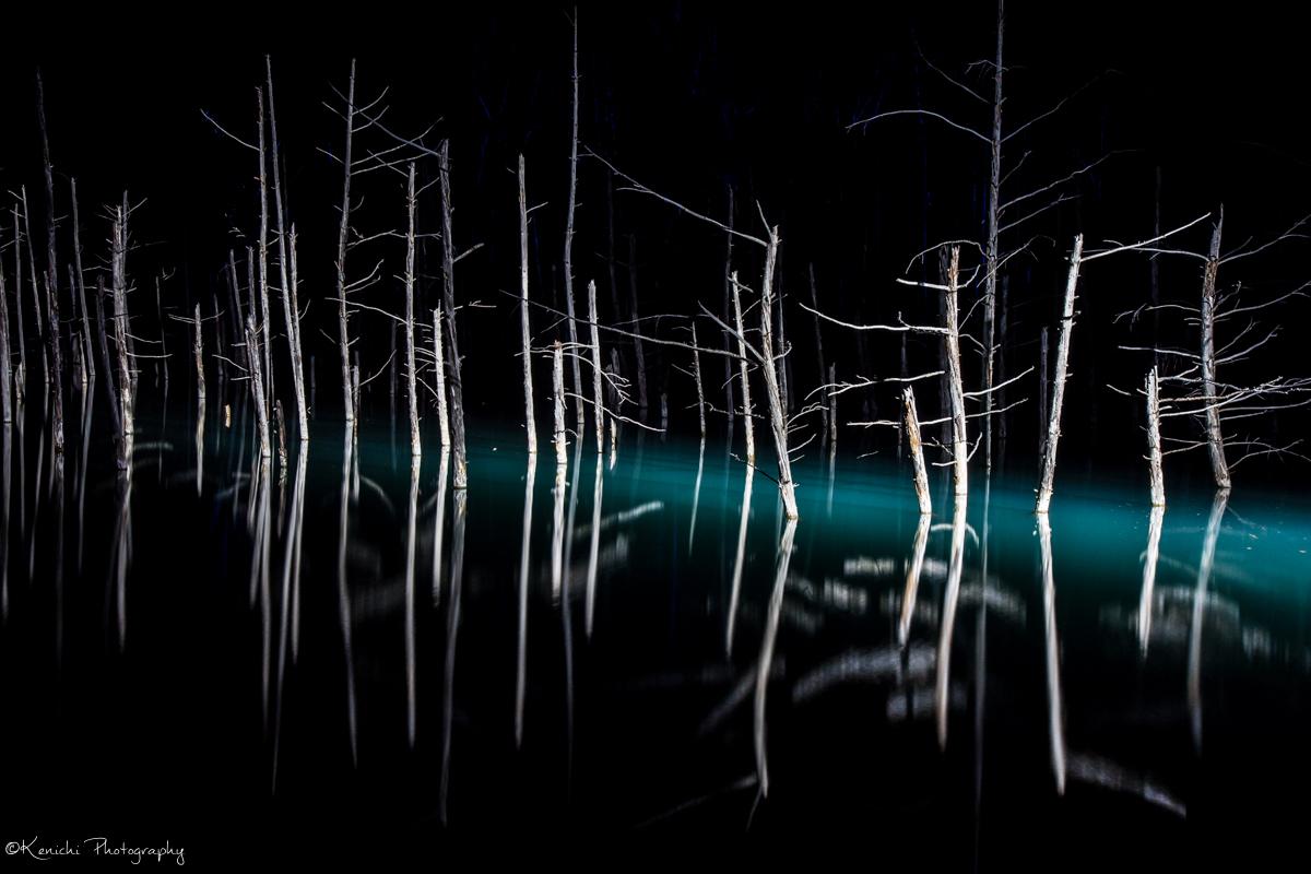 今年も青い池のライトアップに行ってきました!
