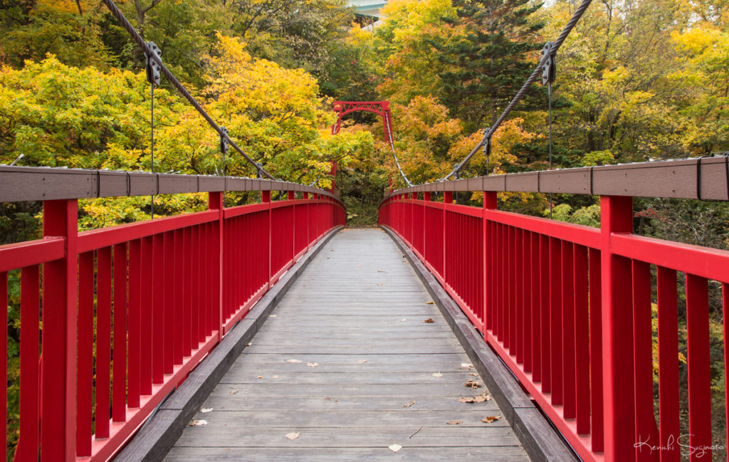 定山渓の二見吊橋は紅葉がとても綺麗です。